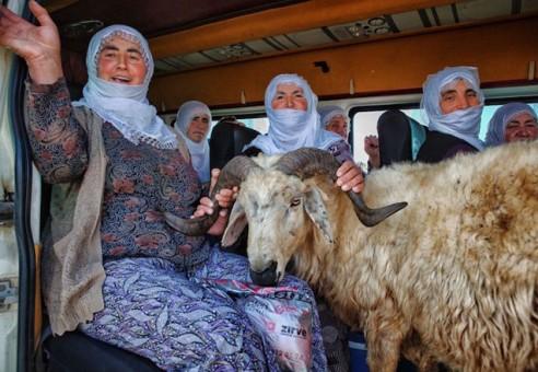 Fotografas praleido 6 metus įamžindamas nesuvaidintą Turkijos kaimo gyvenimą [FOTO]